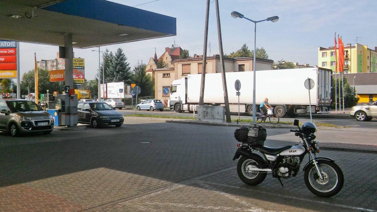 Kawka na Statoil w Krotoszynie