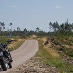Trasa Dywan - Dziemiany - niegdyś zalesiona