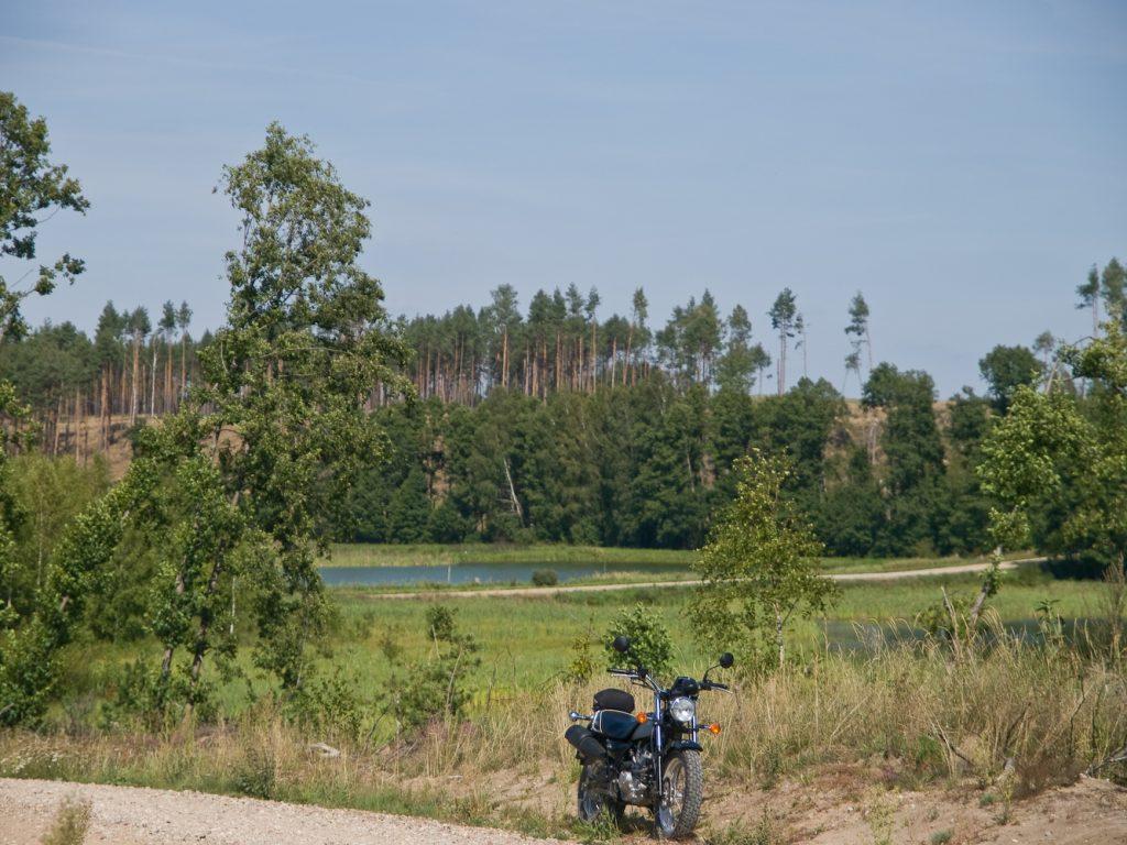 Stawy hodowlane Główczewice- Leśno